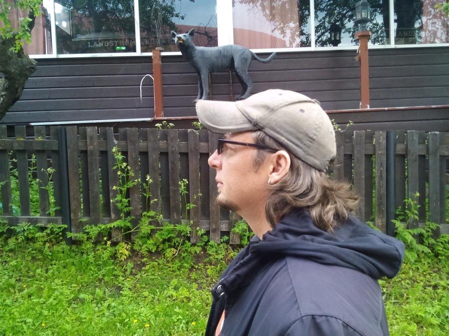 Кошка на голове