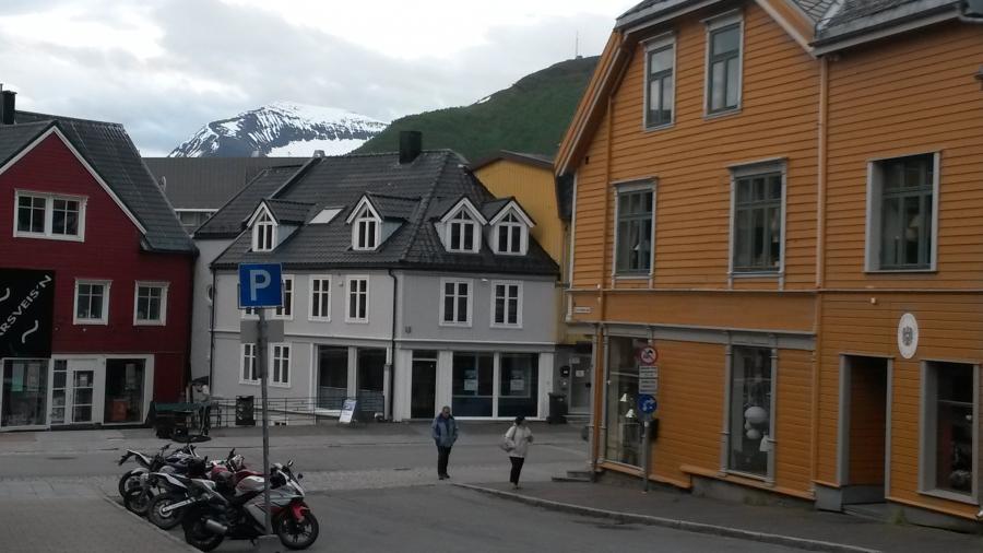 Дома на фоне зеленой и снежной вершины